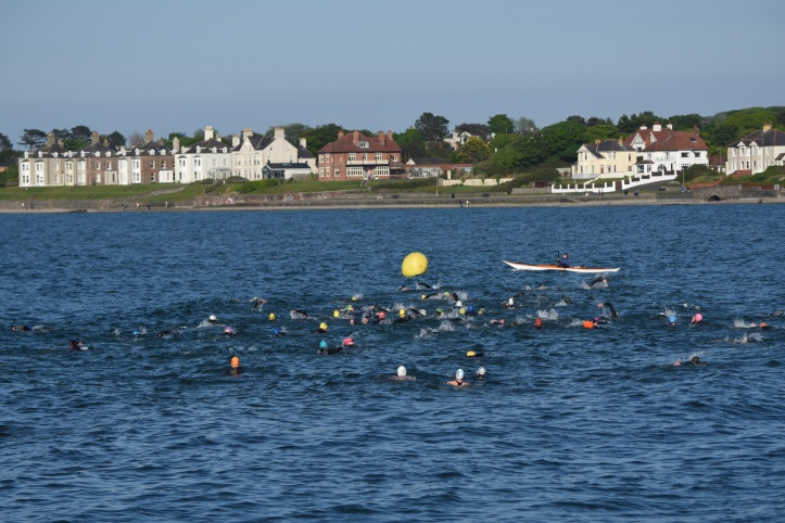 Ballyholme swimmers