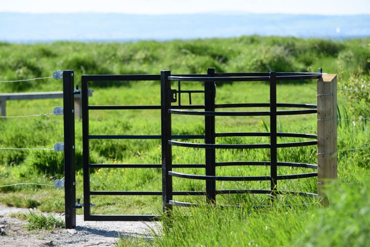 Ballymacormick gate