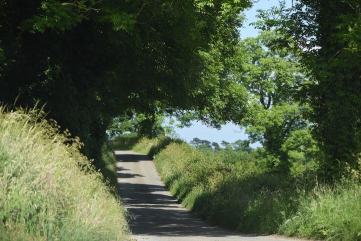 Ardigon Road Tullyveery