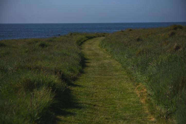 Kearney grass path