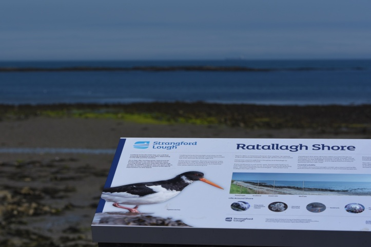Ratallagh Shore sign (1)