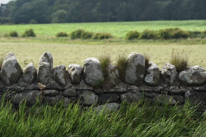 Roddans stone wall