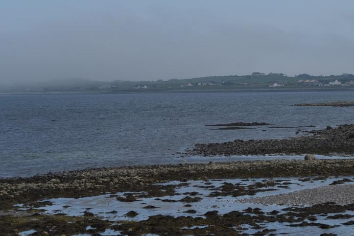 Sea fog at Ballyhalbert (1)