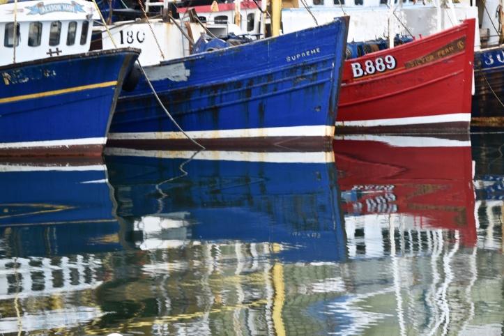 ardglass-boats