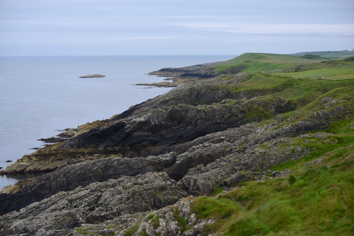 sheepland-coast