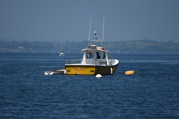 cuan-shore-boat-portaferry