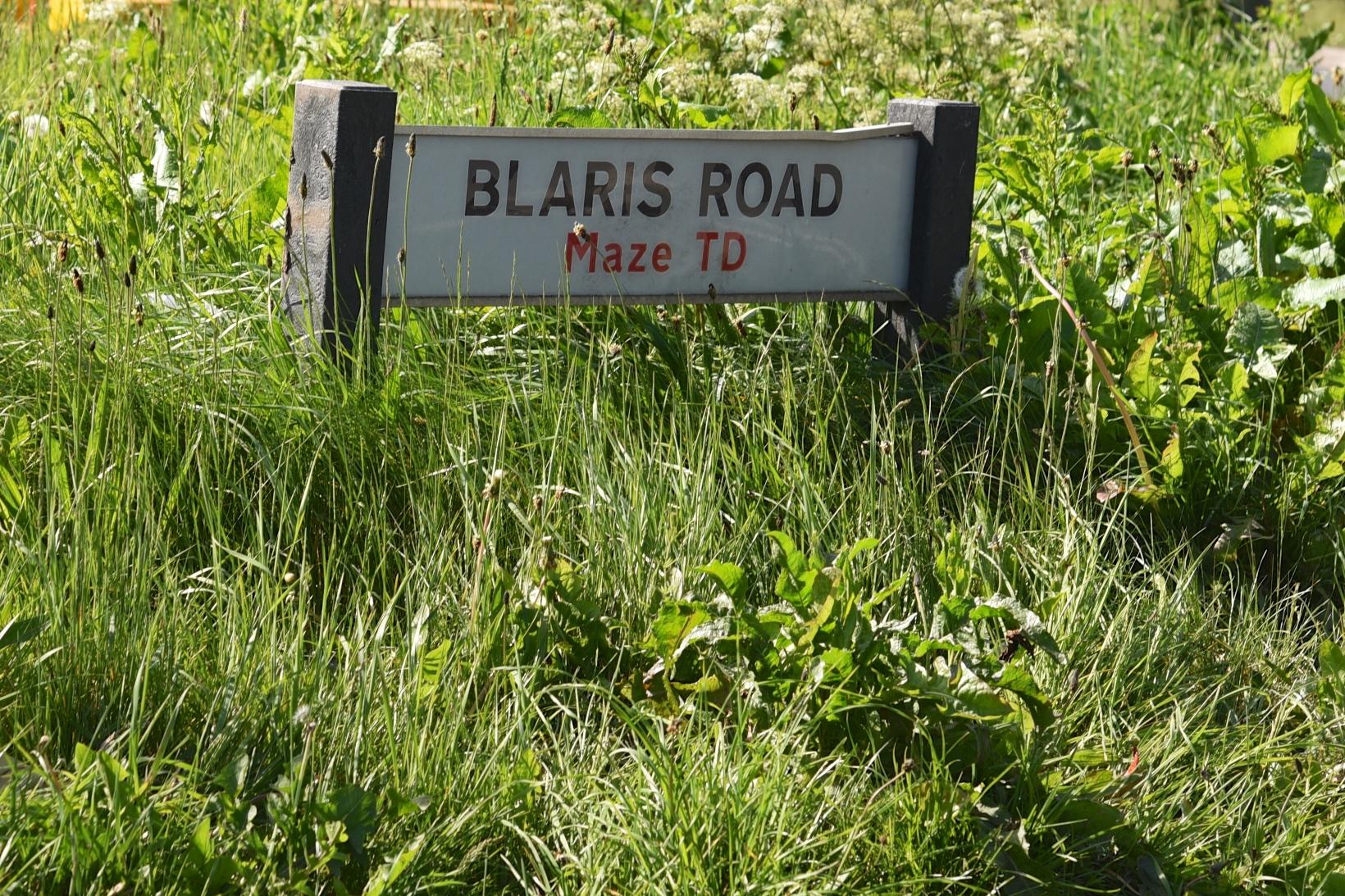 Blaris